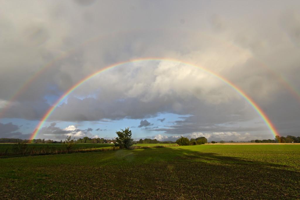 Un arc-en-ciel au-dessus d'un champ verdoyant, sous un ciel nuageux.