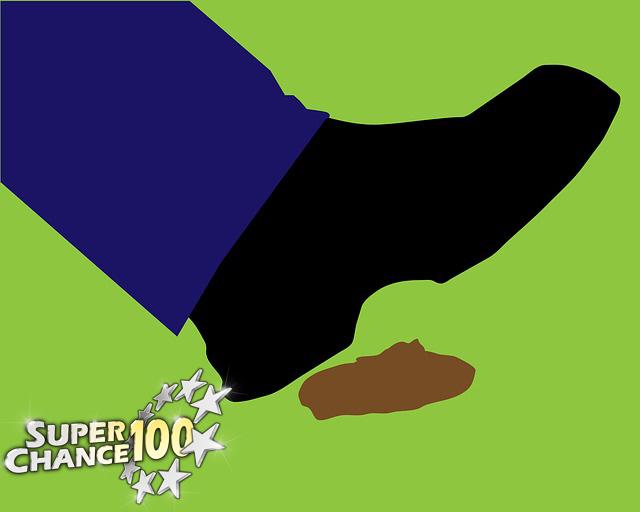 Un pied s'apprête à marcher dans une crotte de chien.