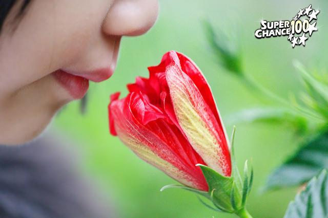 Photographie d'un enfant en train de sentir l'odeur d'une fleur.