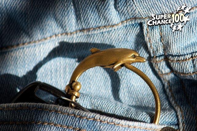Photographie d'un porte-clé en forme de dauphin dans une poche de veste en jeans.