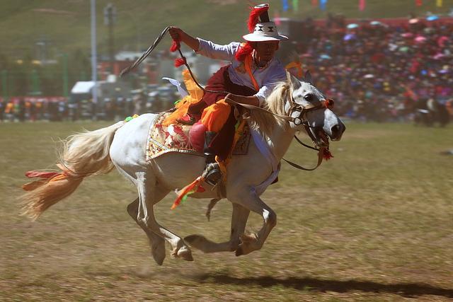Un Chinois sur un cheval blanc.