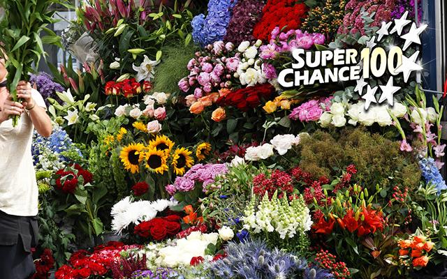 Photographie d'une boutique de fleurs.