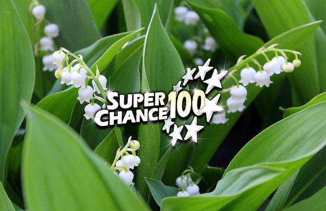 Photographie du muguet pour symboliser le mois de mai et une nouvelle saison pour l'Euro Millions.